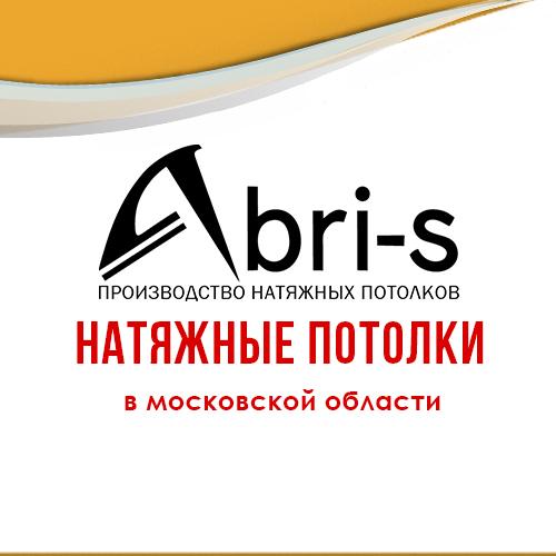 Компания Abri-s