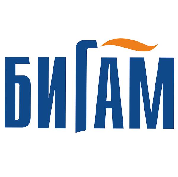 Бигам, сеть магазинов инструмента, техники и строительного оборудования