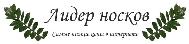 Лидер Носков