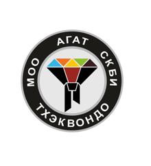 Спортивный клуб боевых единоборств «Агат»