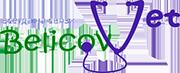 BelokovVet – вызов ветеринара на дом