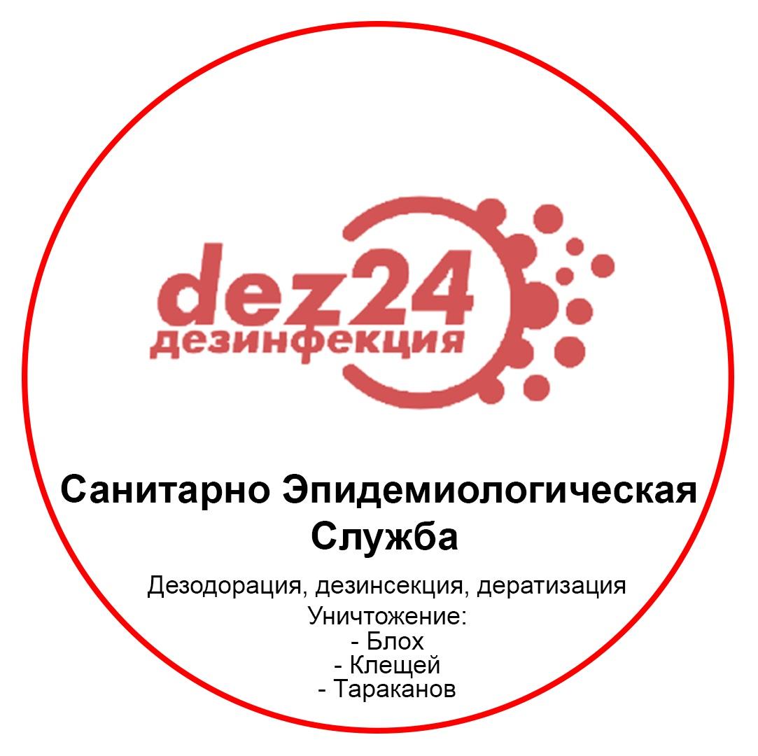 24dezinfektor.ru